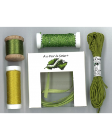 Ontdekpakket surfine ruban vert (PACK DECOUVERTE)